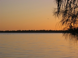 A lone bird flies over the calm water of Lake Dunn as the sun rises.